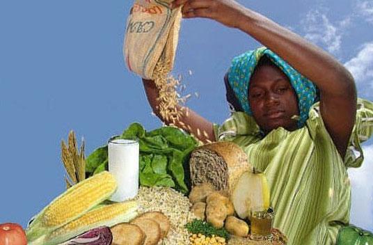 Kan Afrika zichzelf voeden?